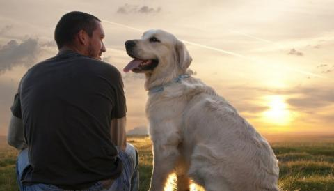 10 Reasons To Date Dog-Lovers